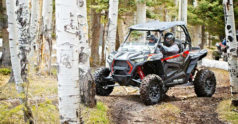 two people riding in an OHV in a forest